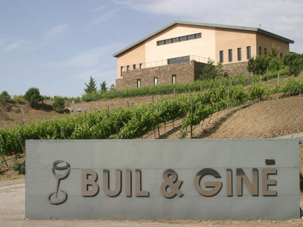 Buil and Gine Vineyard