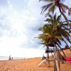 Top 10 budget beach hotels and guesthouses in Sri Lanka