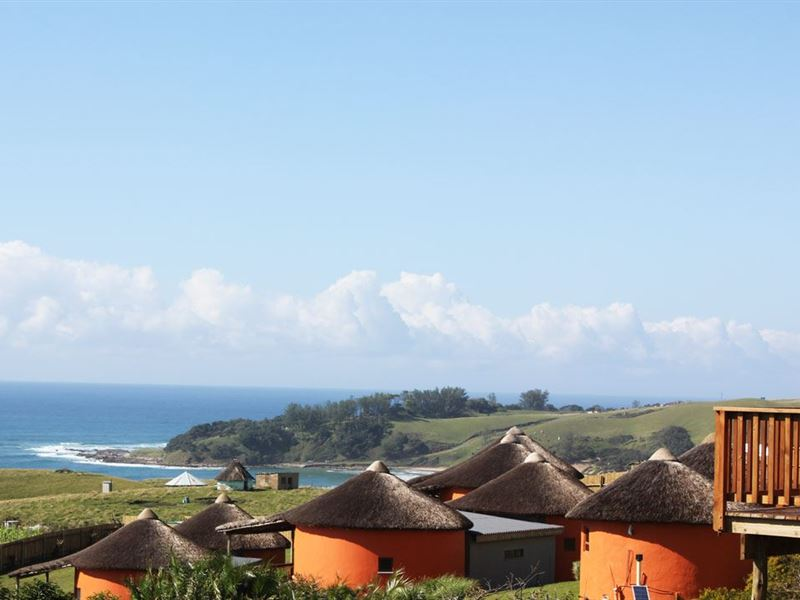 South Africa budget hotels-Wild house