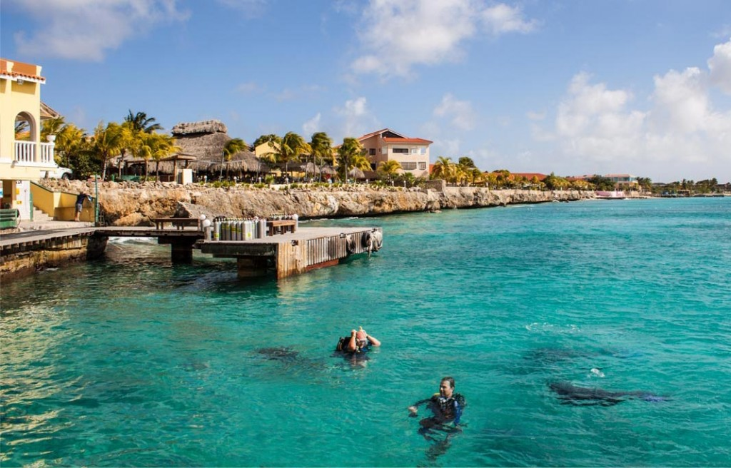 Bonaire-perfect place for diving  03