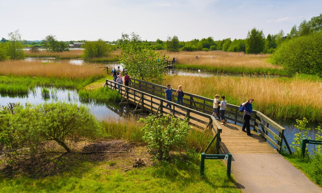 London Wetland Centre comprises 105 protected acres