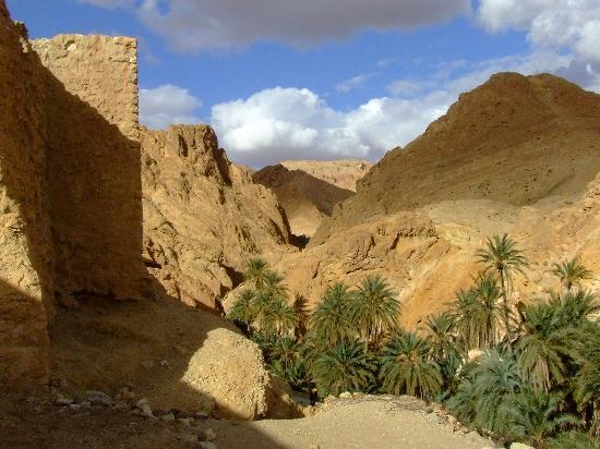 Djerba island-Pearl of Africa