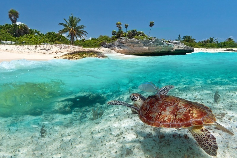 Zanzibar island-a beautiful island in Tanzania 03