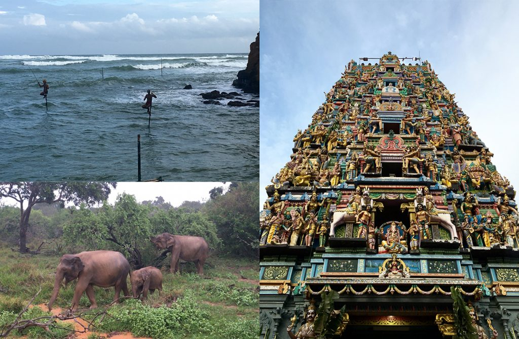To Discover the Beauty of Sri Lanka