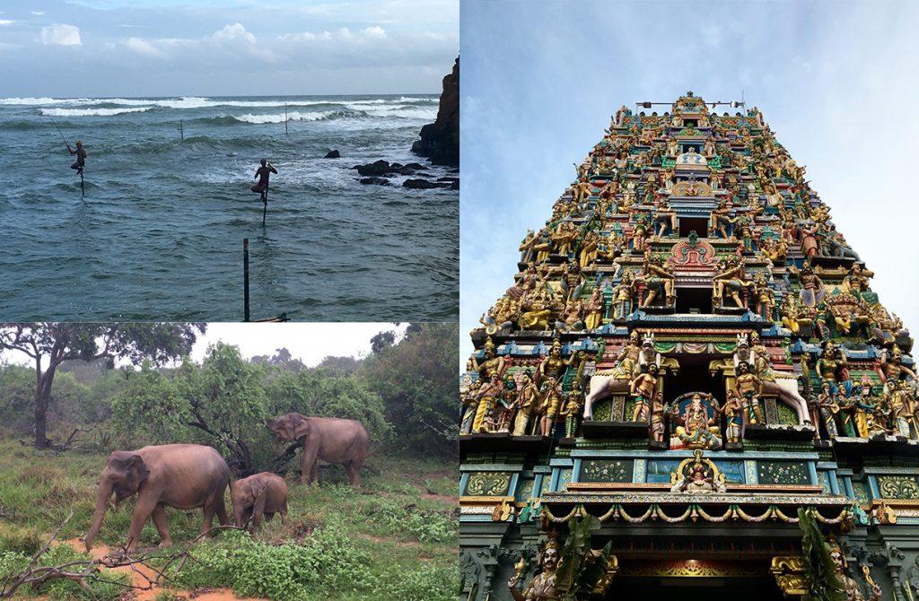 To Discover the Beauty of Sri Lanka