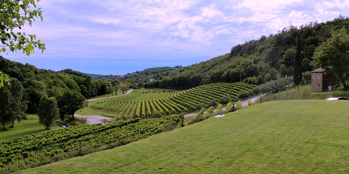 Tips For First Time Travel To Croatia | Awesome local wines